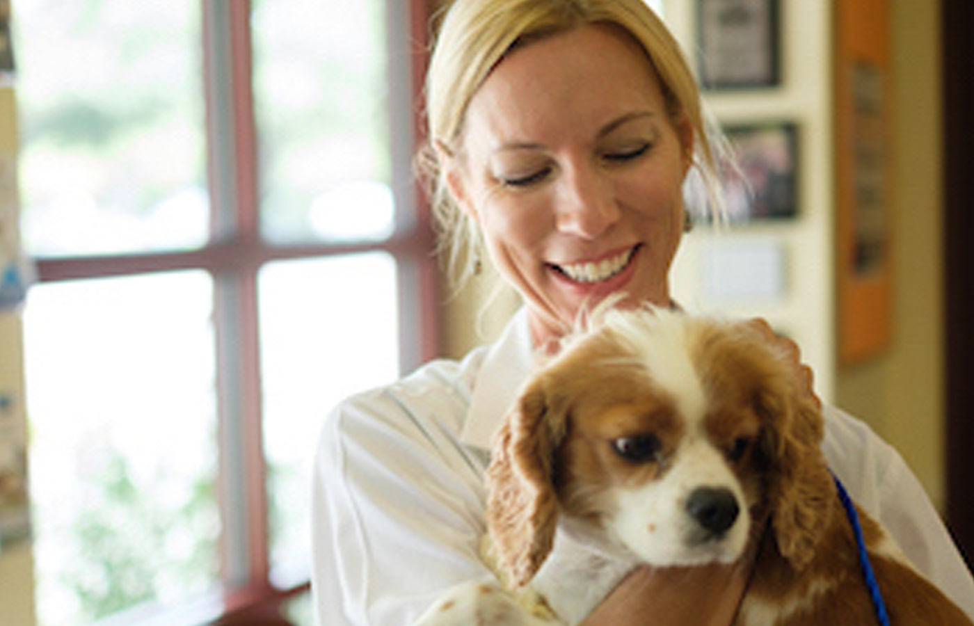 veterinarian and dog at parasite prevention