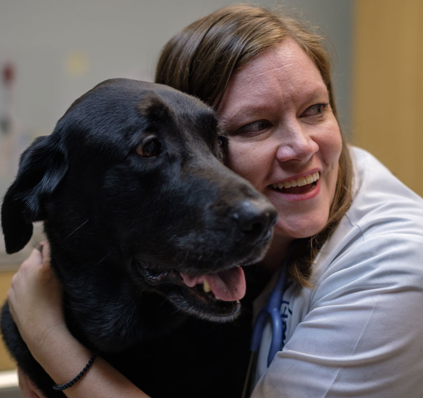veterinarian with physical rehab and therapy dog