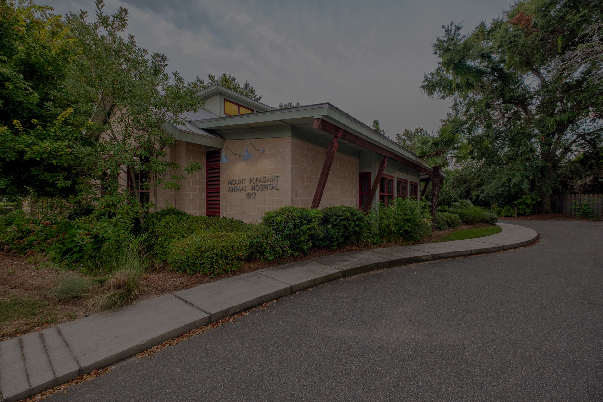mount pleasant animal hospital exterior